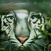 Parking Tigre